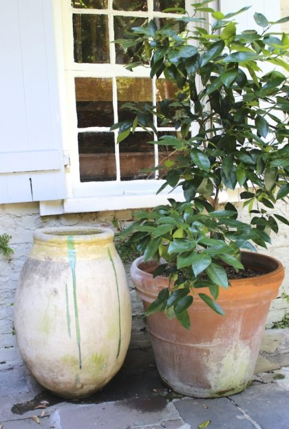 Antique French Olive Jars